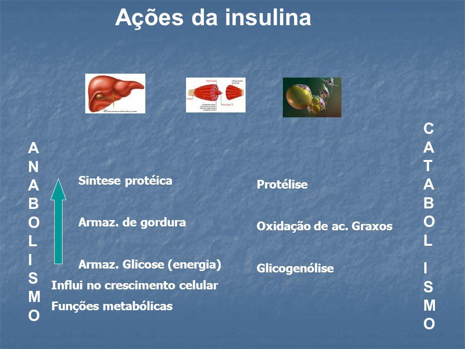 Ações da insulina CATABOL ANABOLISMO ISMO Sintese protéica Protélise