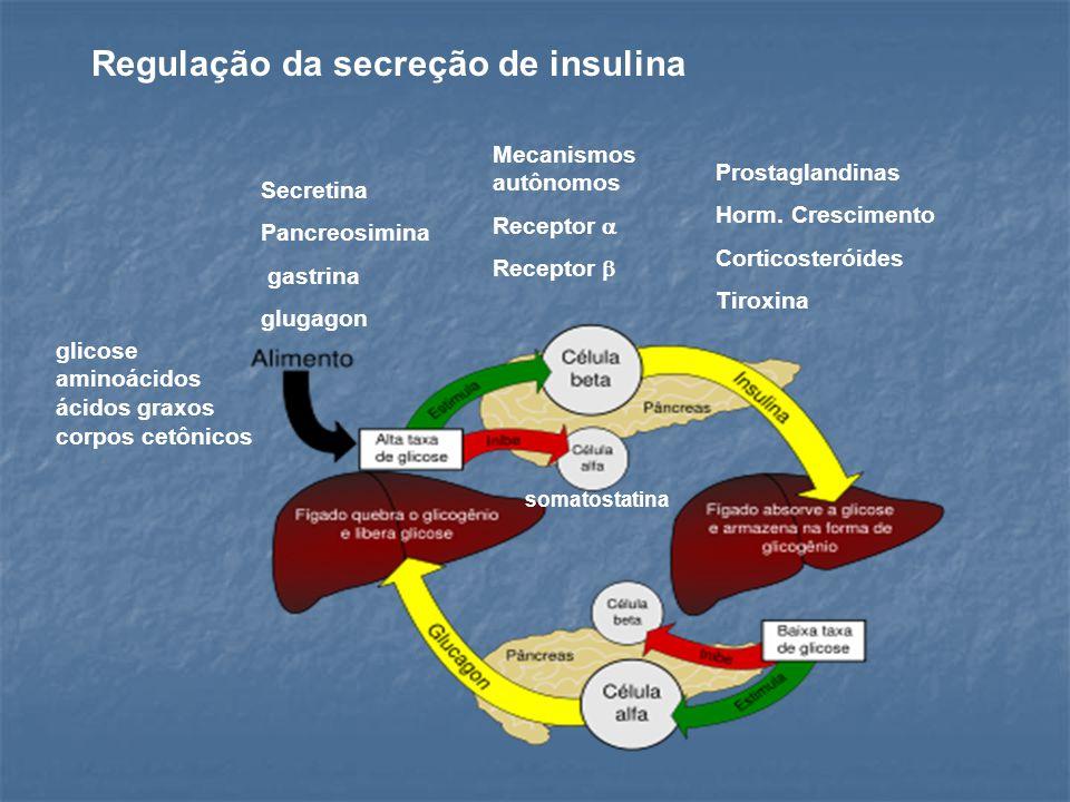 Regulação da secreção de insulina