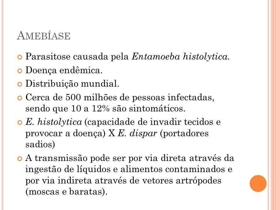 Amebíase Parasitose causada pela Entamoeba histolytica.