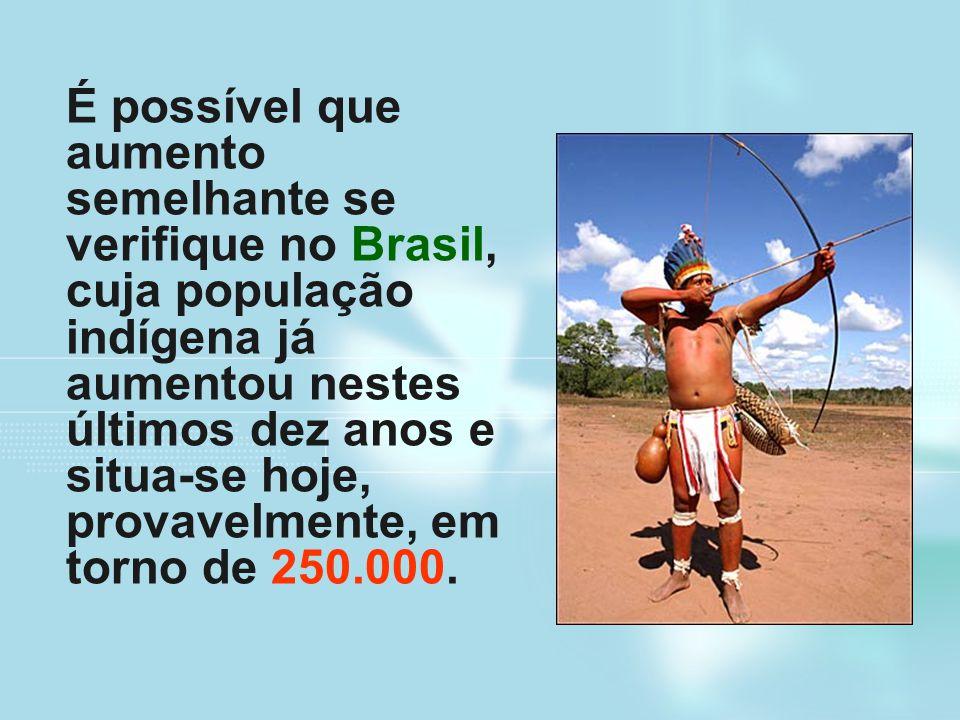É possível que aumento semelhante se verifique no Brasil, cuja população indígena já aumentou nestes últimos dez anos e situa-se hoje, provavelmente, em torno de 250.000.