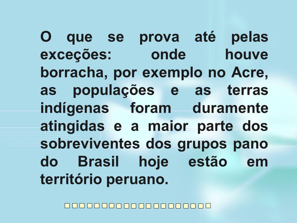 O que se prova até pelas exceções: onde houve borracha, por exemplo no Acre, as populações e as terras indígenas foram duramente atingidas e a maior parte dos sobreviventes dos grupos pano do Brasil hoje estão em território peruano.