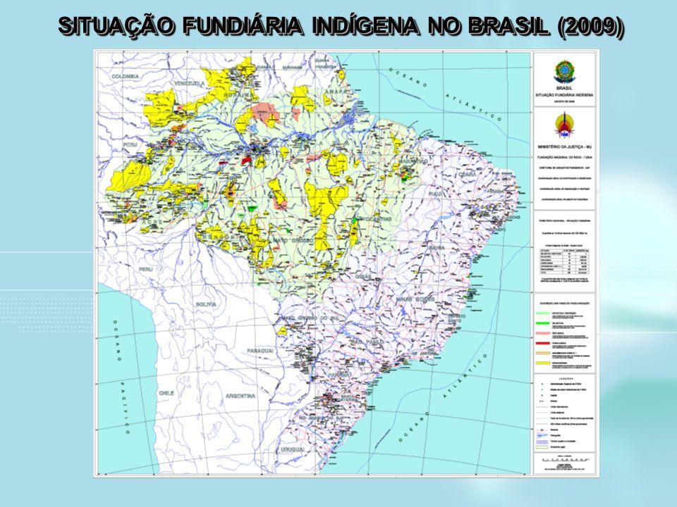 SITUAÇÃO FUNDIÁRIA INDÍGENA NO BRASIL (2009)