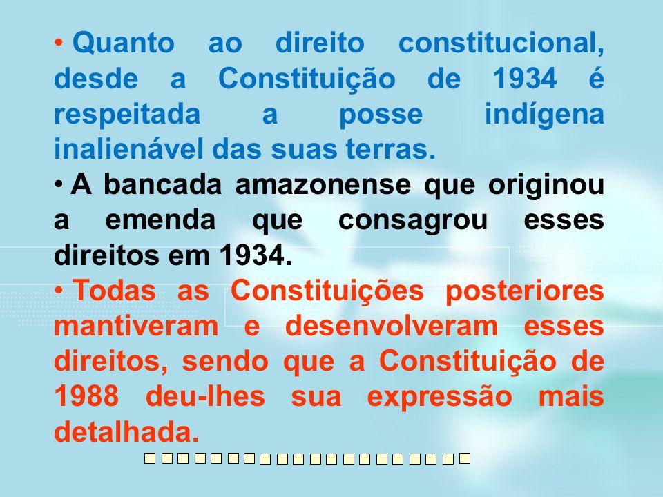 Quanto ao direito constitucional, desde a Constituição de 1934 é respeitada a posse indígena inalienável das suas terras.
