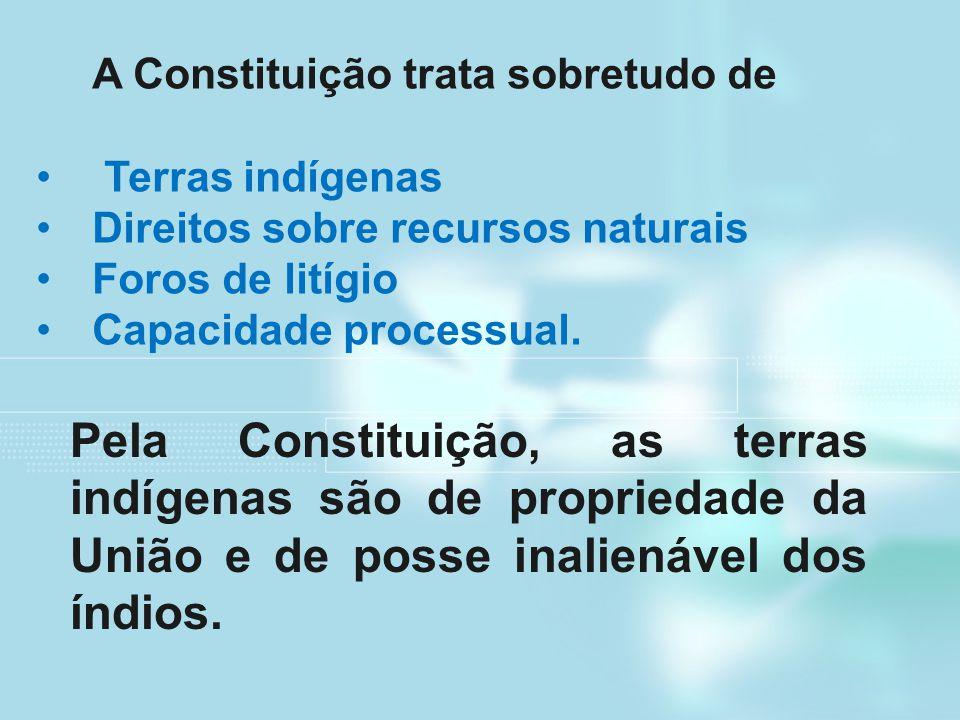 A Constituição trata sobretudo de