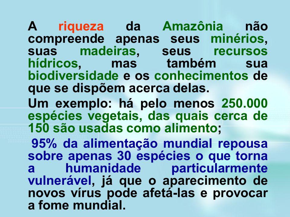 A riqueza da Amazônia não compreende apenas seus minérios, suas madeiras, seus recursos hídricos, mas também sua biodiversidade e os conhecimentos de que se dispõem acerca delas.