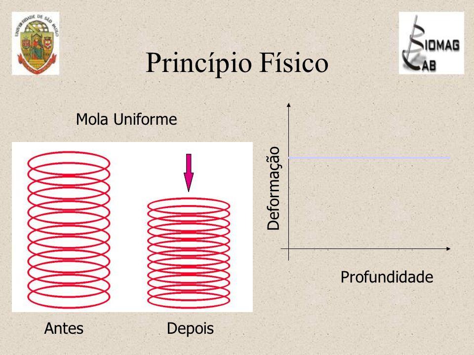 Princípio Físico Deformação Profundidade Mola Uniforme Antes Depois