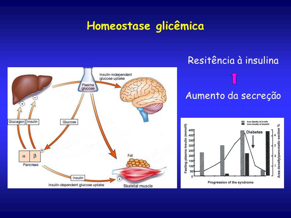 Homeostase glicêmica Resitência à insulina Aumento da secreção