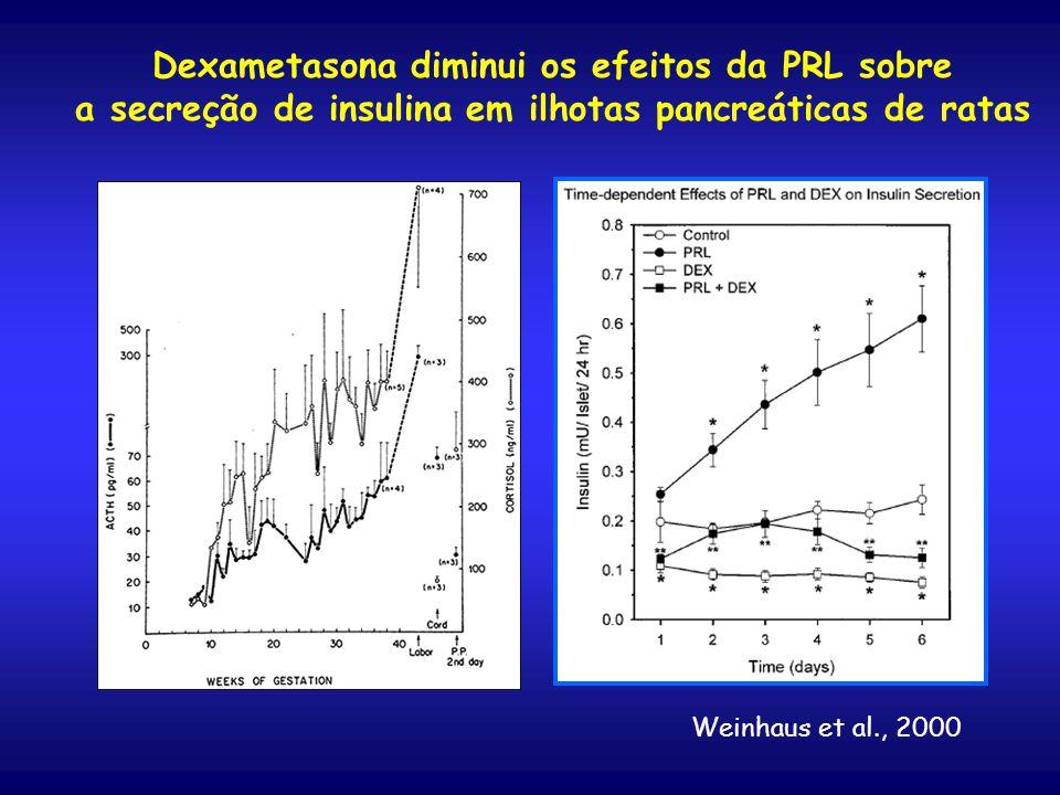 Dexametasona diminui os efeitos da PRL sobre