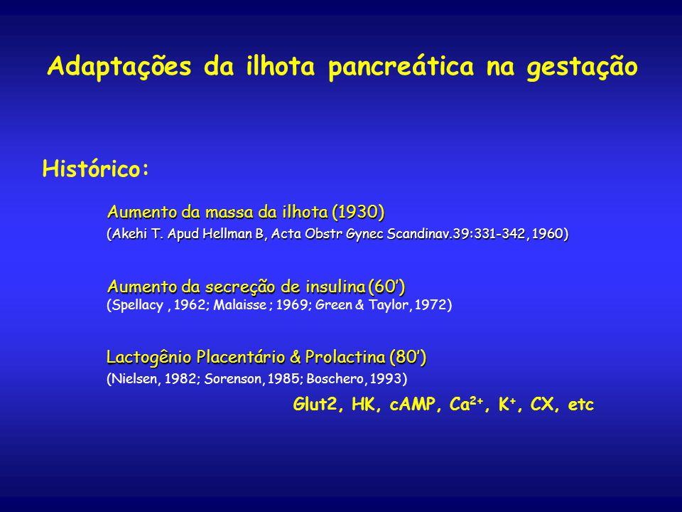 Adaptações da ilhota pancreática na gestação