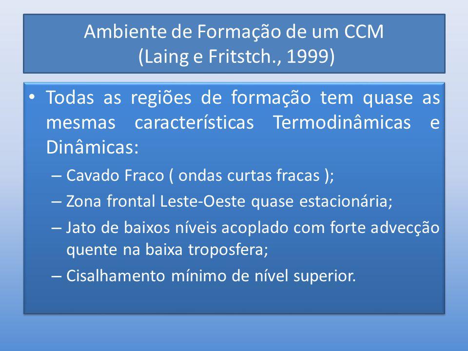 Ambiente de Formação de um CCM (Laing e Fritstch., 1999)