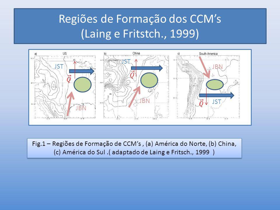 Regiões de Formação dos CCM's (Laing e Fritstch., 1999)