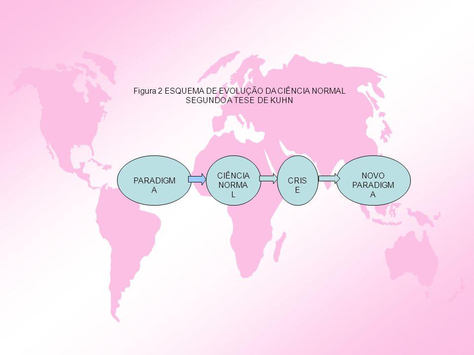 Figura 2 ESQUEMA DE EVOLUÇÃO DA CIÊNCIA NORMAL