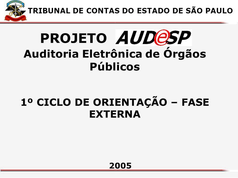 PROJETO Auditoria Eletrônica de Órgãos Públicos
