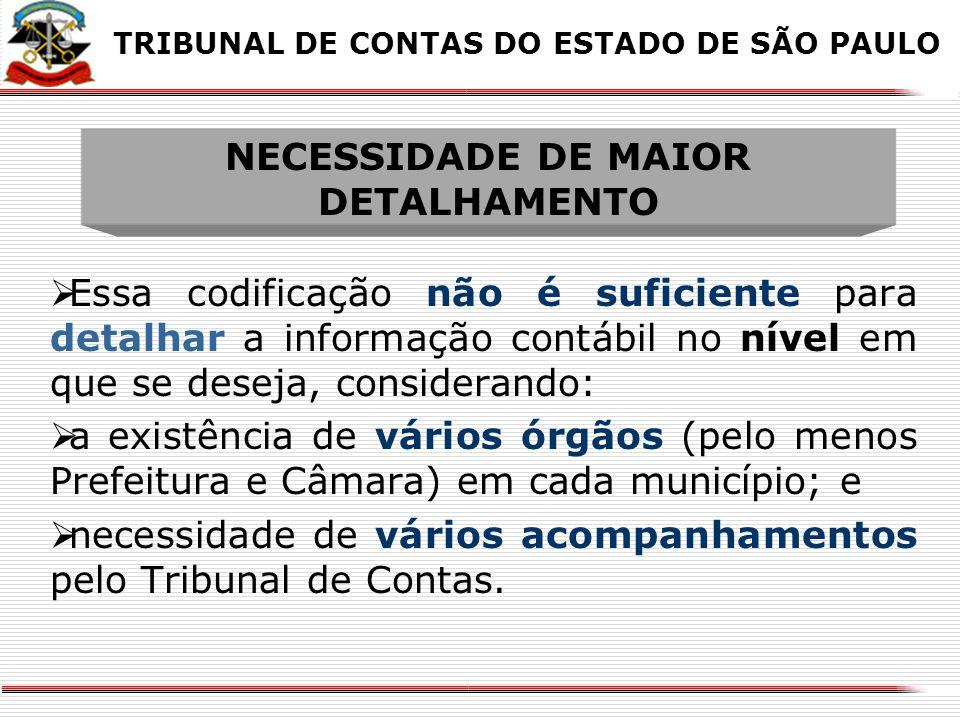 NECESSIDADE DE MAIOR DETALHAMENTO