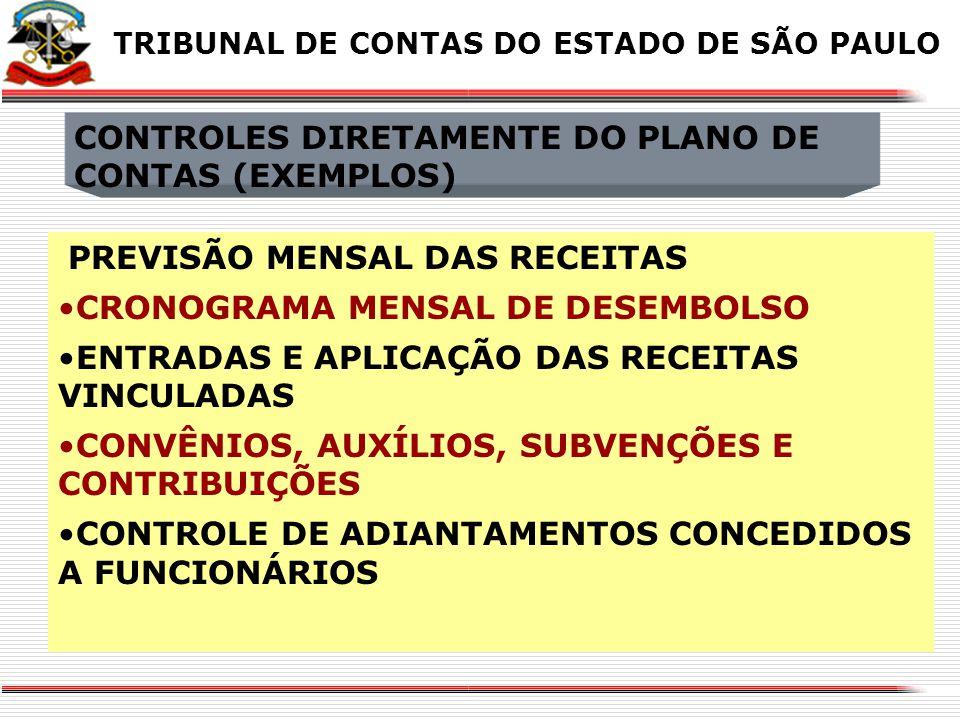 CONTROLES DIRETAMENTE DO PLANO DE CONTAS (EXEMPLOS)
