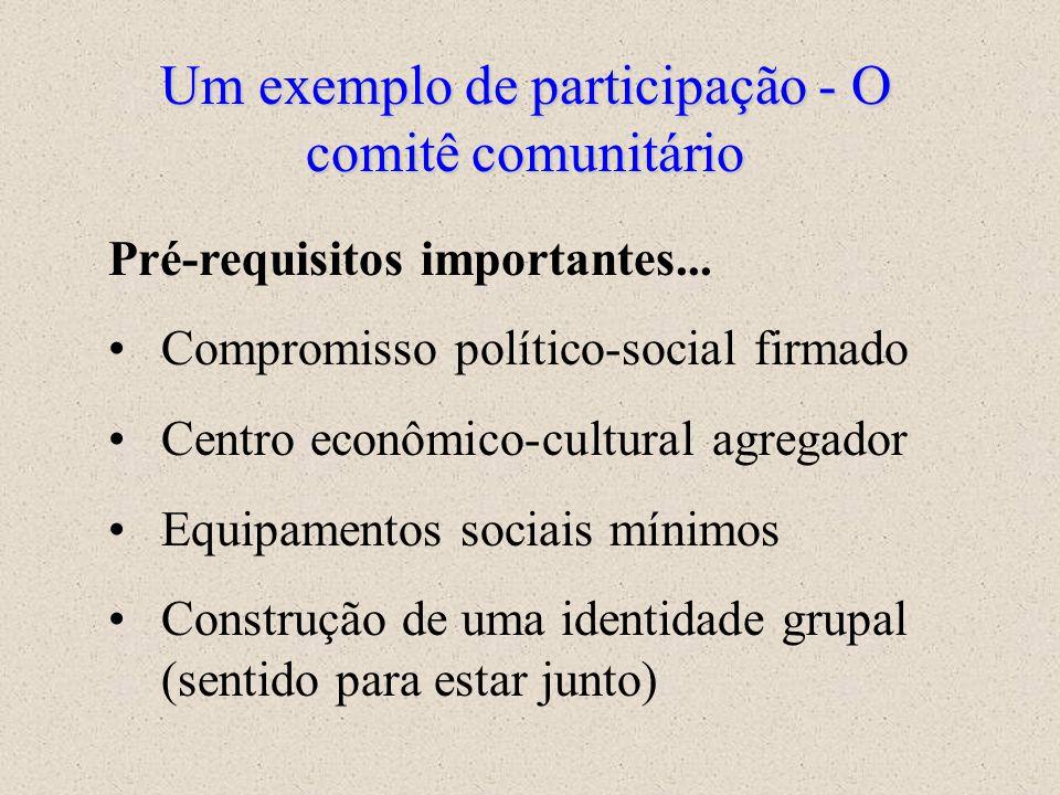Um exemplo de participação - O comitê comunitário