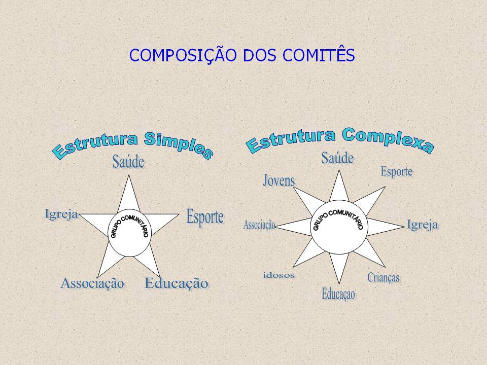 Estrutura Complexa Saúde Educaçao Esporte Igreja Associação Jovens