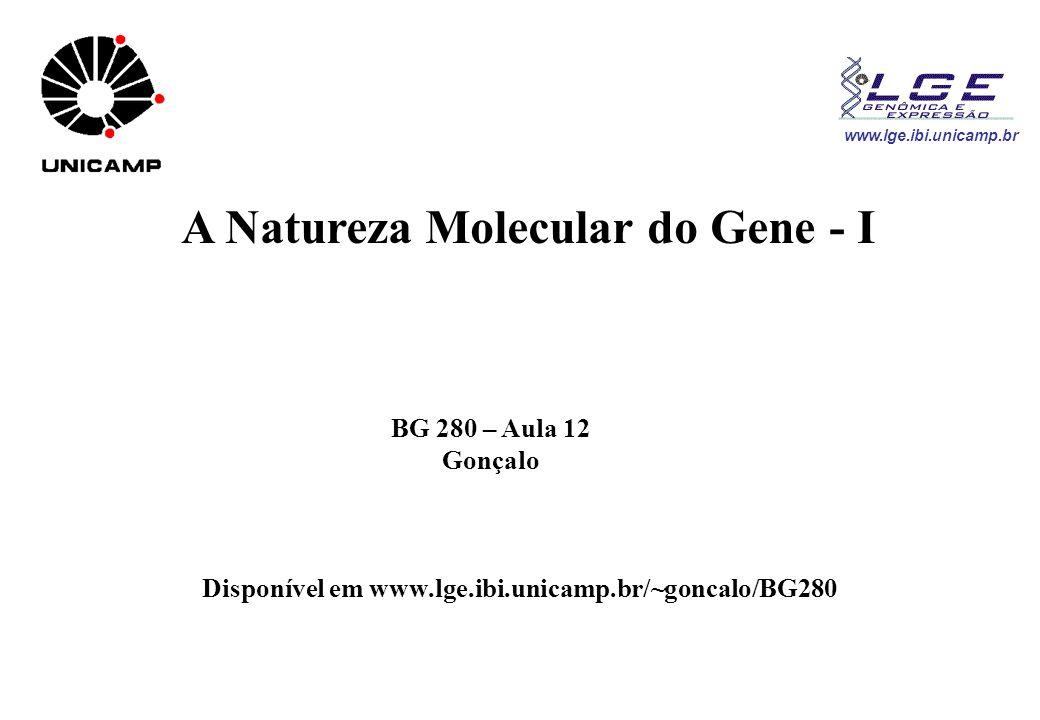 A Natureza Molecular do Gene - I