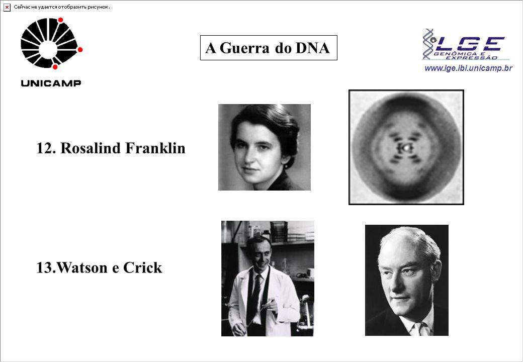 A Guerra do DNA 12. Rosalind Franklin 13.Watson e Crick