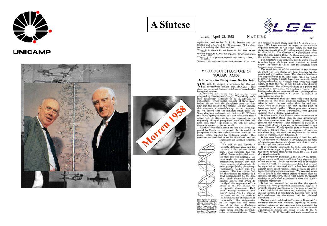 A Síntese Nobel 1962 Morreu 1958