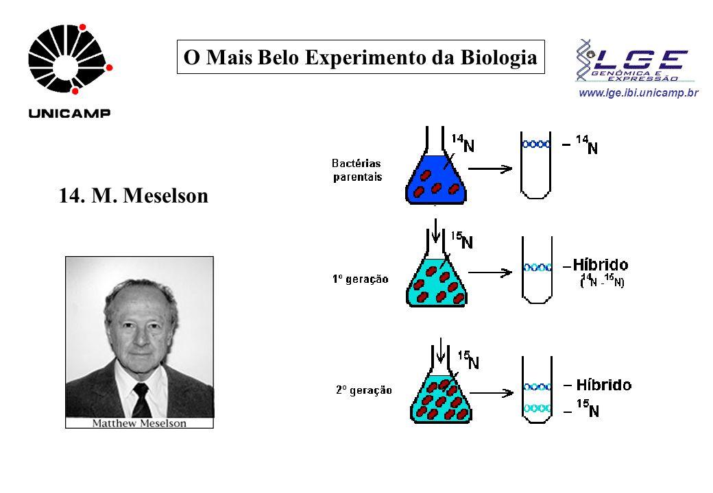 O Mais Belo Experimento da Biologia