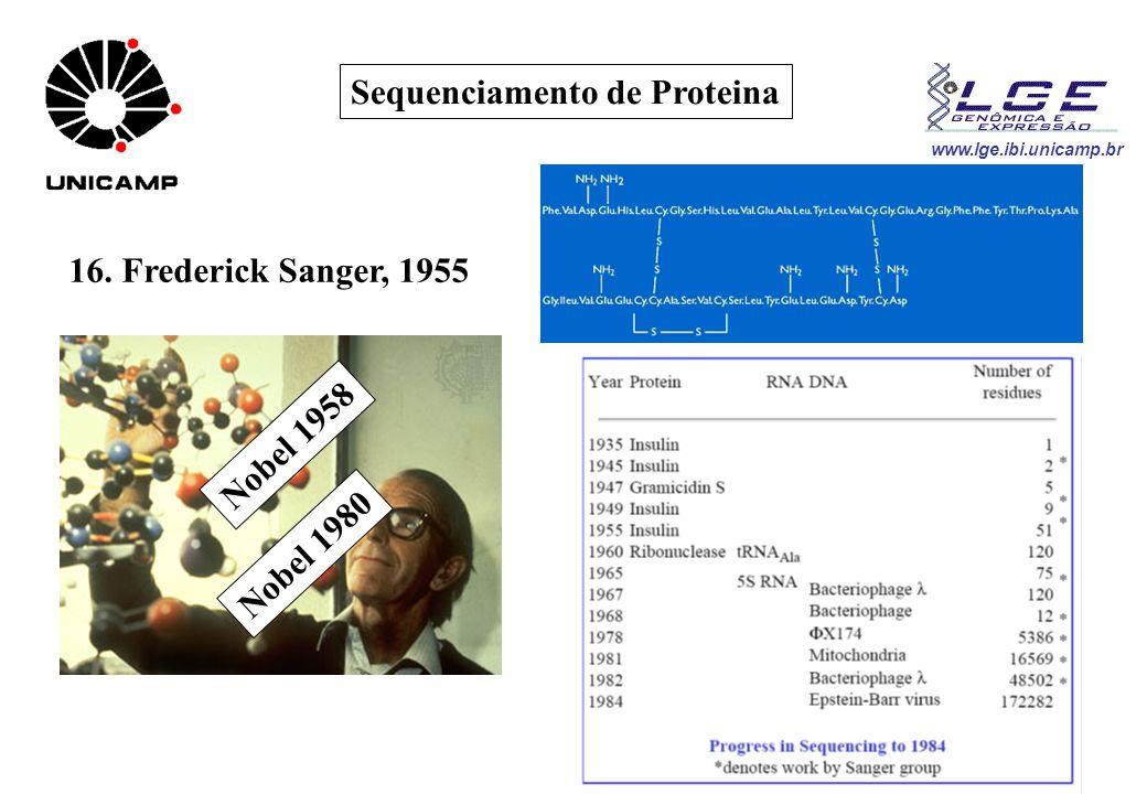 Sequenciamento de Proteina