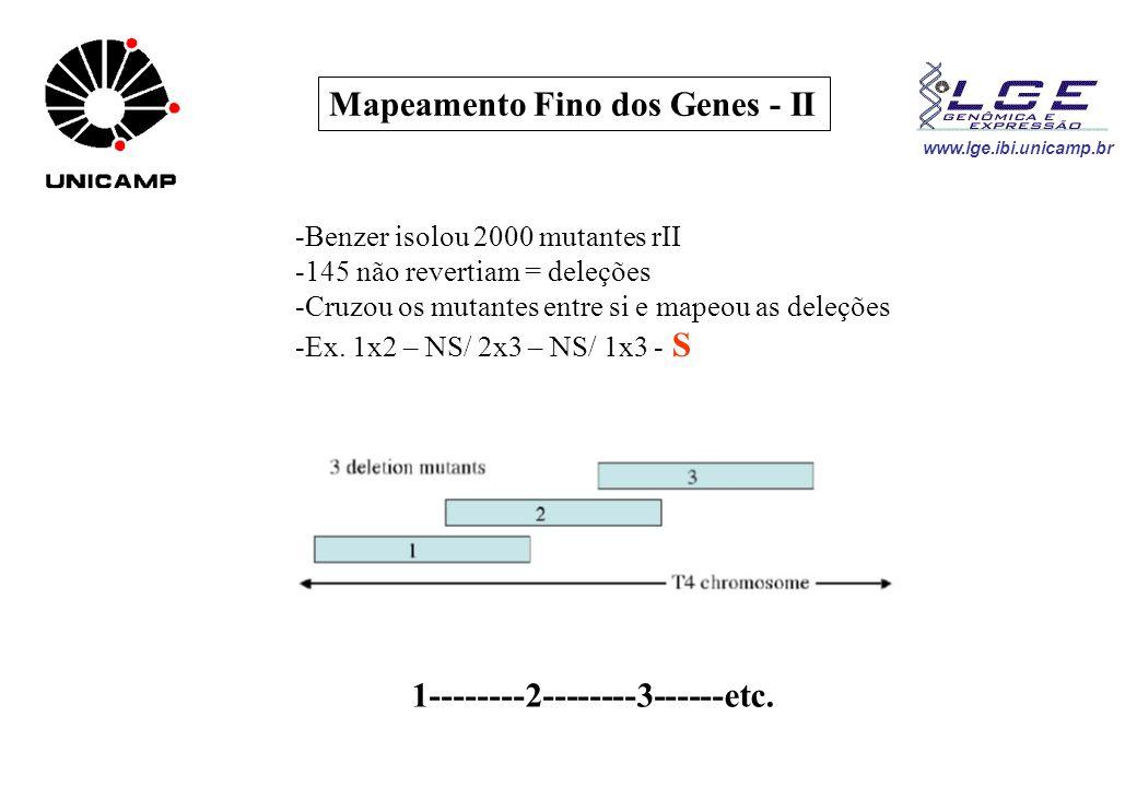 Mapeamento Fino dos Genes - II