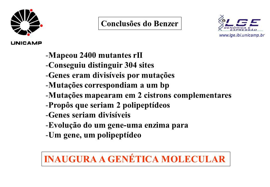 INAUGURA A GENÉTICA MOLECULAR