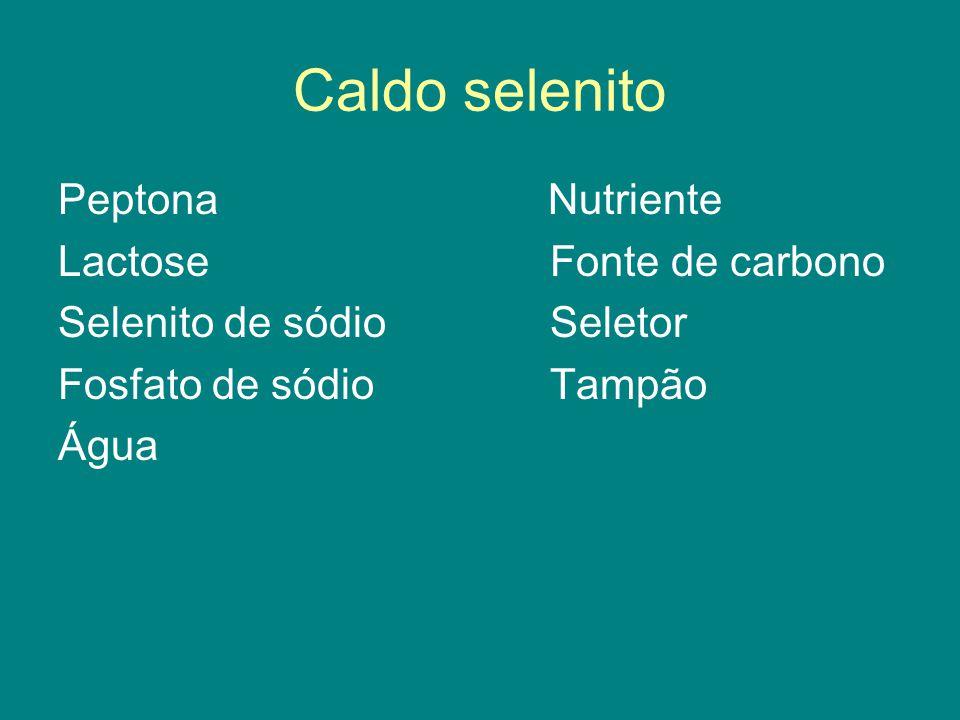 Caldo selenito Peptona Nutriente Lactose Fonte de carbono