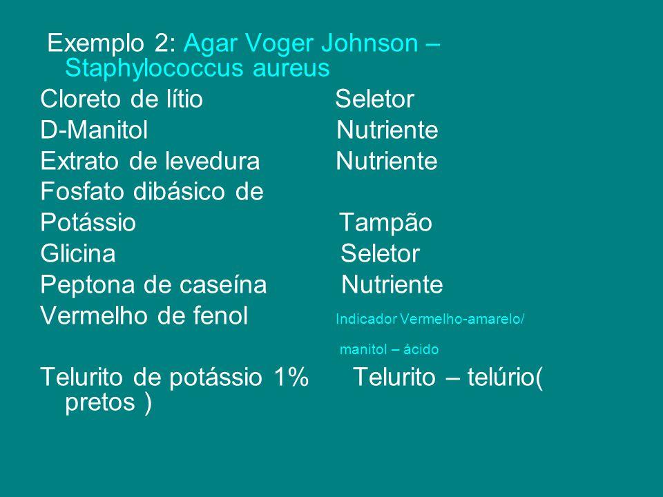 Exemplo 2: Agar Voger Johnson – Staphylococcus aureus