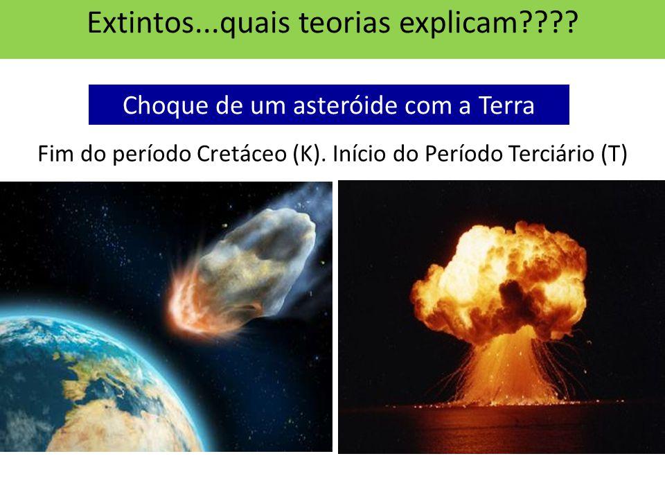 Extintos...quais teorias explicam