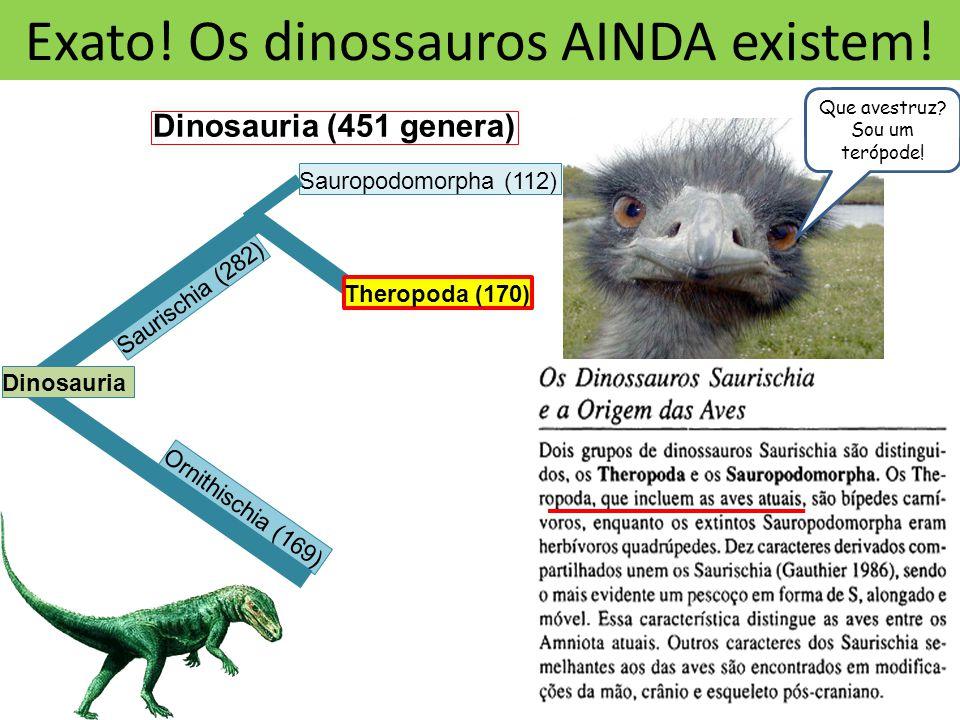 Exato! Os dinossauros AINDA existem!