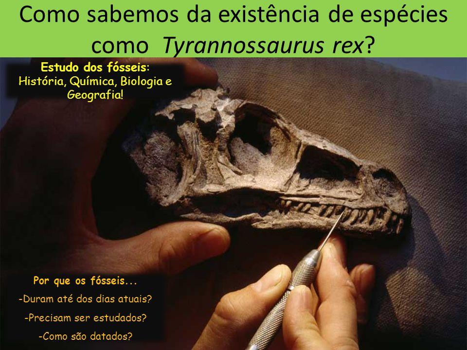 Como sabemos da existência de espécies como Tyrannossaurus rex