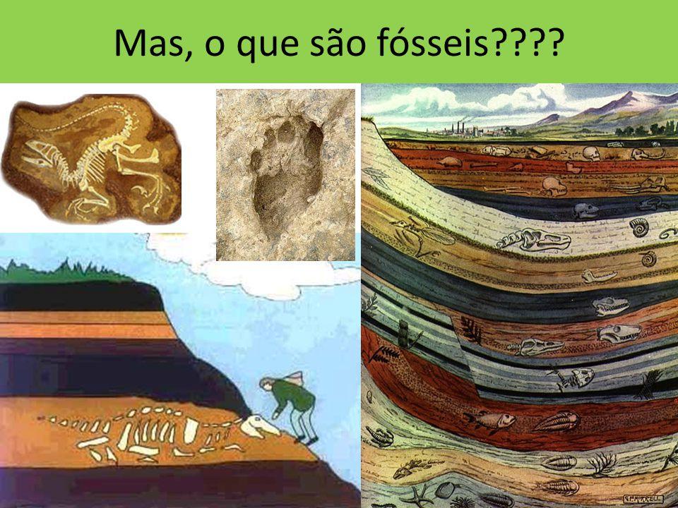 Mas, o que são fósseis