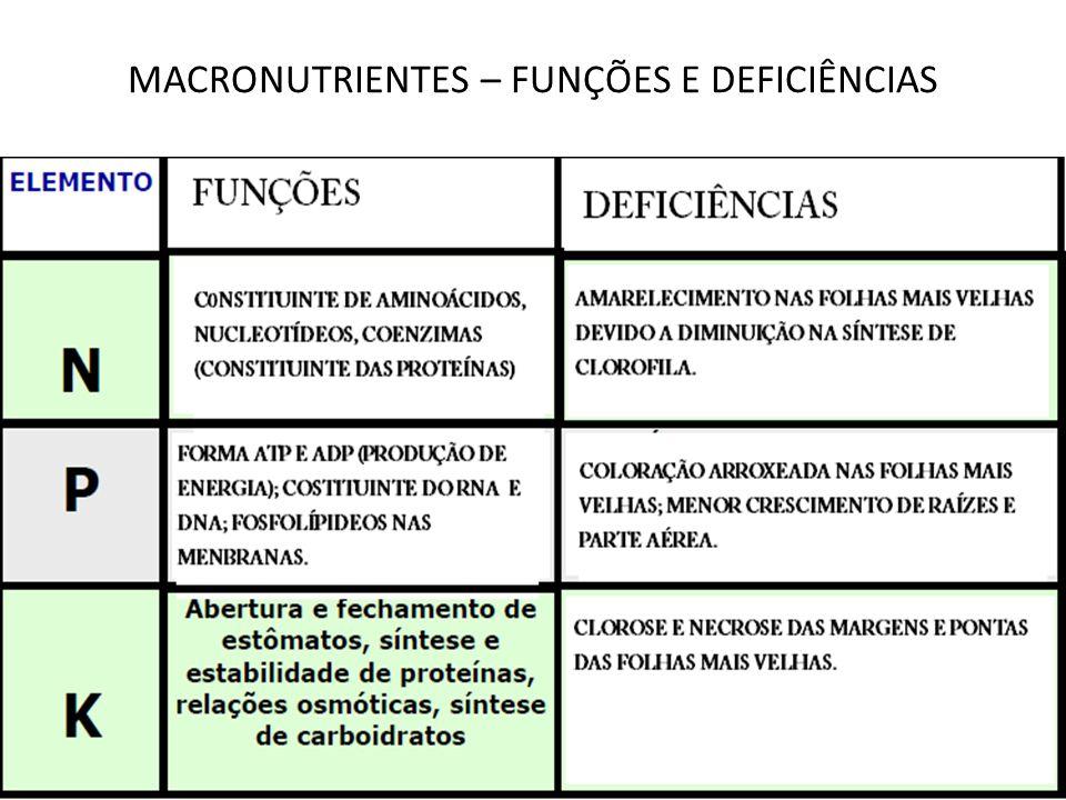 MACRONUTRIENTES – FUNÇÕES E DEFICIÊNCIAS