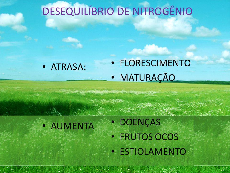 DESEQUILÍBRIO DE NITROGÊNIO