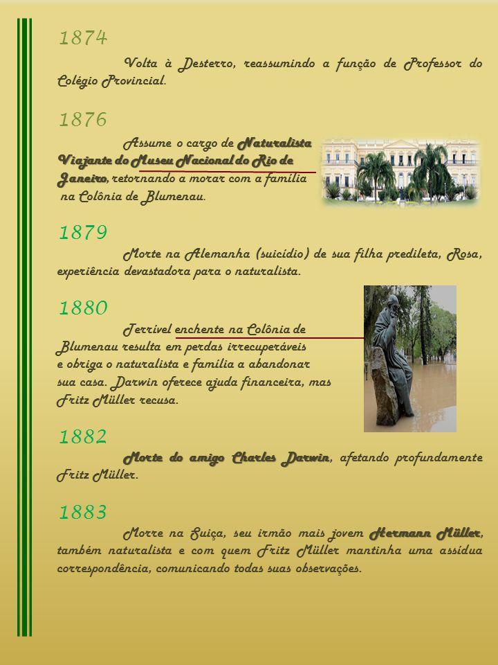 1874 Volta à Desterro, reassumindo a função de Professor do Colégio Provincial. 1876. Assume o cargo de Naturalista.
