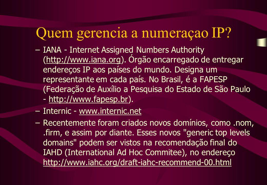 Quem gerencia a numeraçao IP