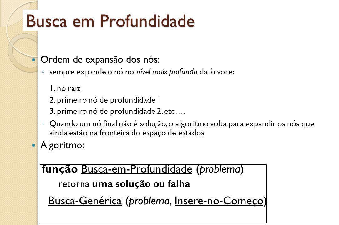 Busca em Profundidade função Busca-em-Profundidade (problema)