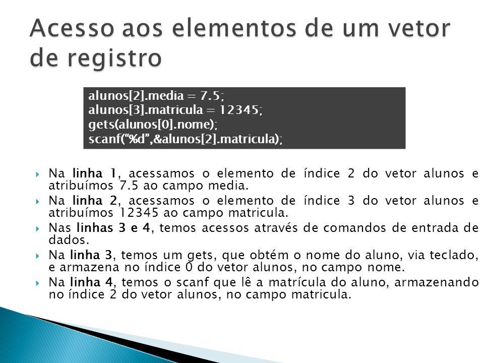 Acesso aos elementos de um vetor de registro
