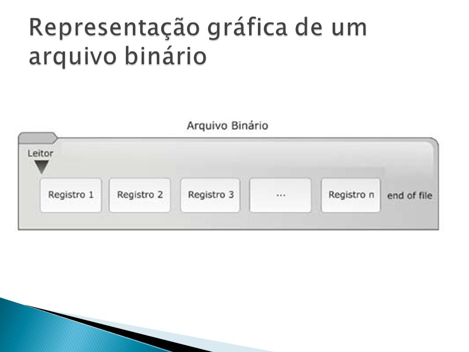 Representação gráfica de um arquivo binário