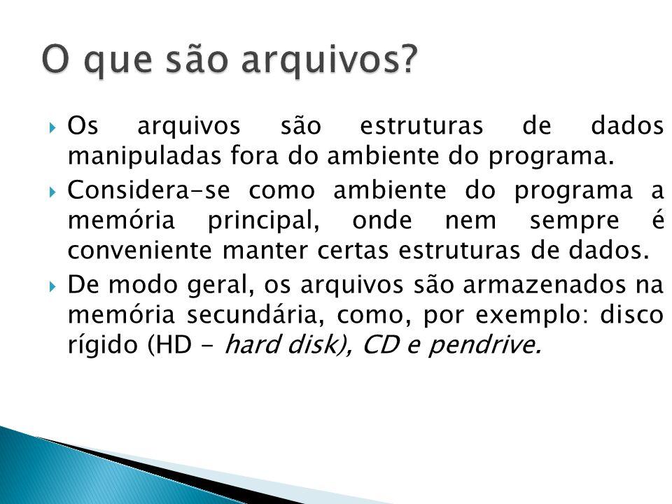 O que são arquivos Os arquivos são estruturas de dados manipuladas fora do ambiente do programa.
