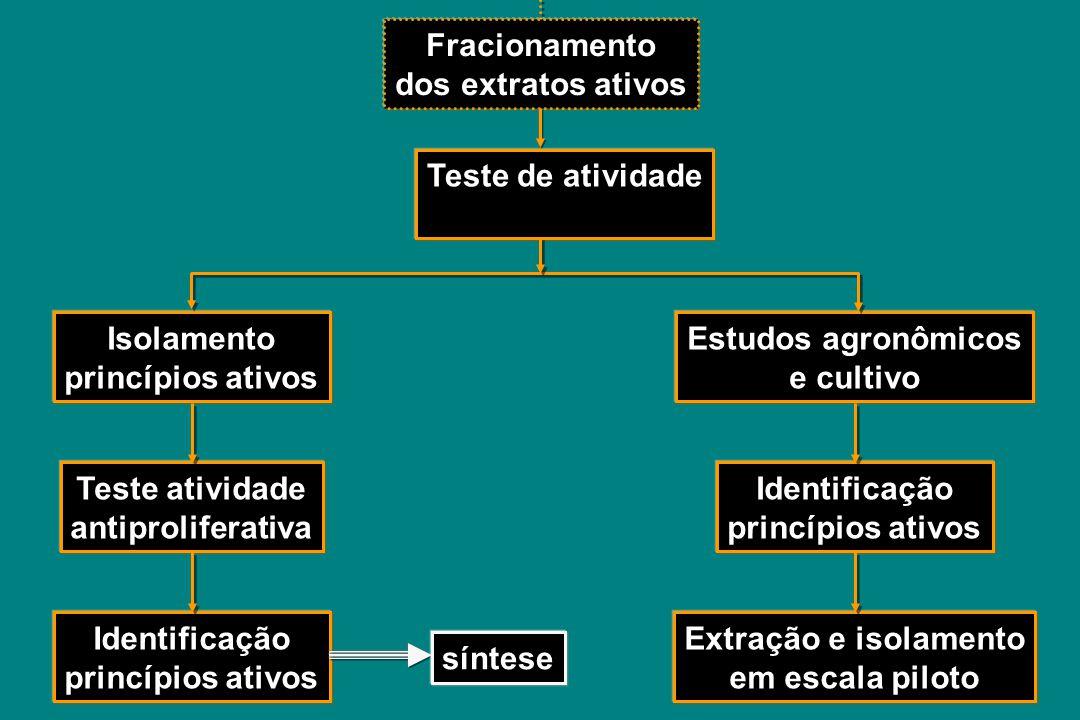 Fracionamento dos extratos ativos. Teste de atividade. Isolamento. princípios ativos. Estudos agronômicos.