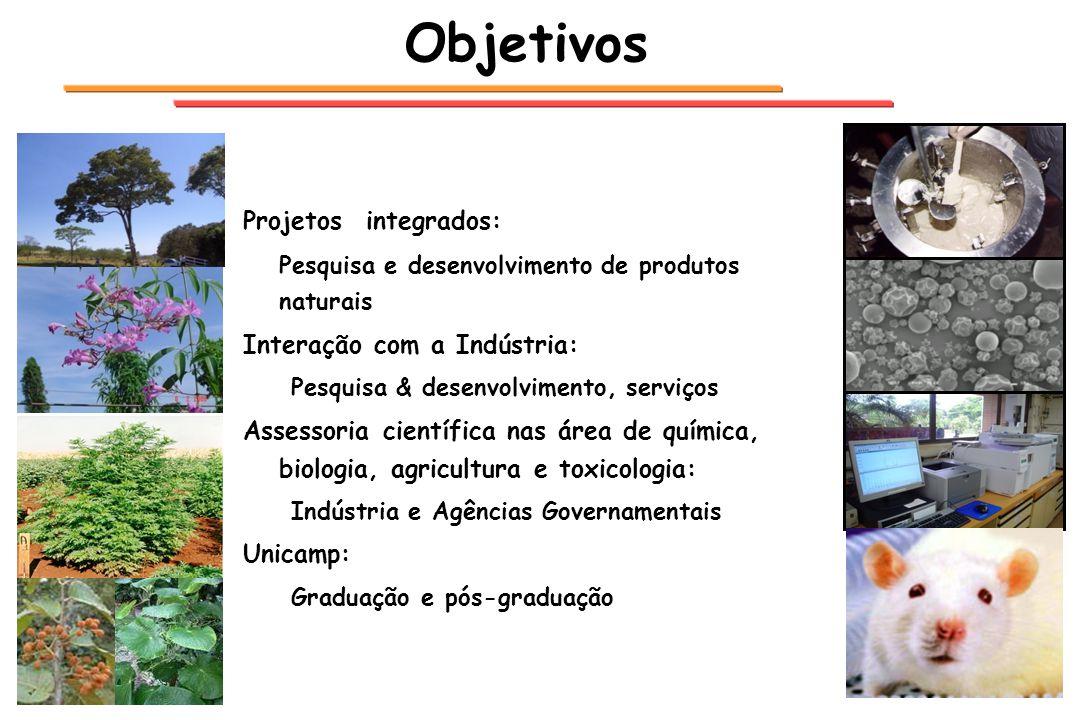 Objetivos Projetos integrados: