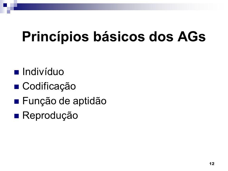 Princípios básicos dos AGs