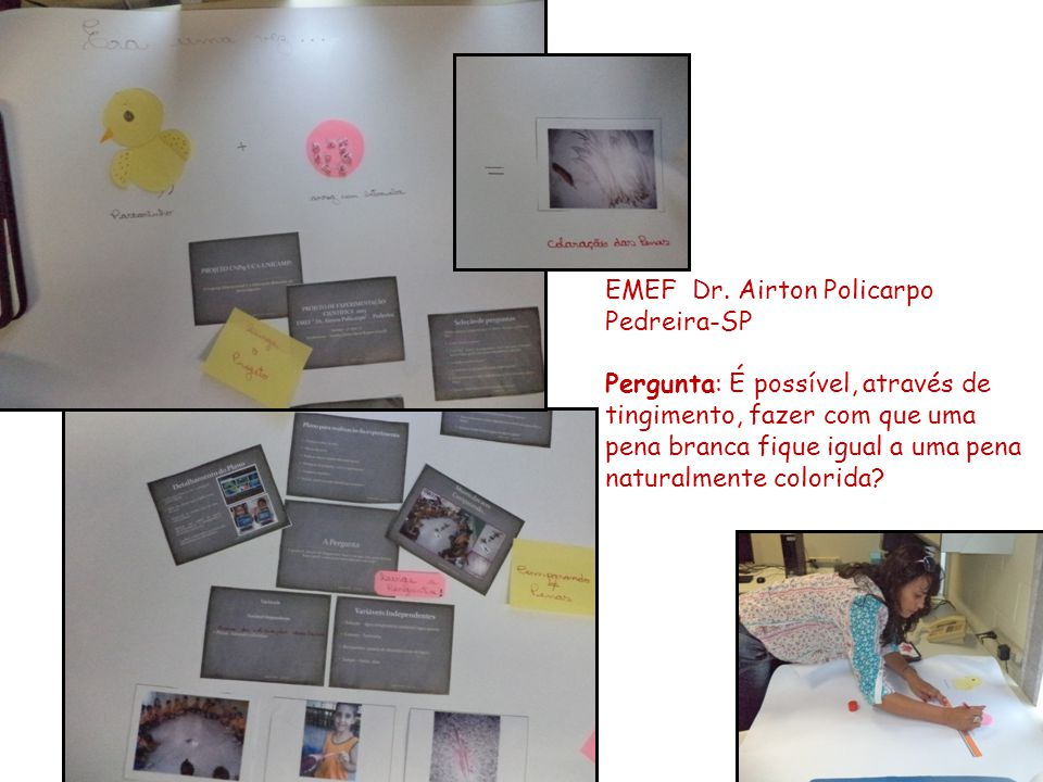 EMEF Dr. Airton Policarpo