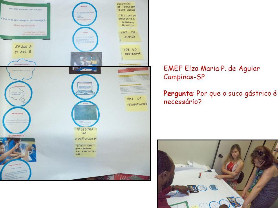 EMEF Elza Maria P. de Aguiar