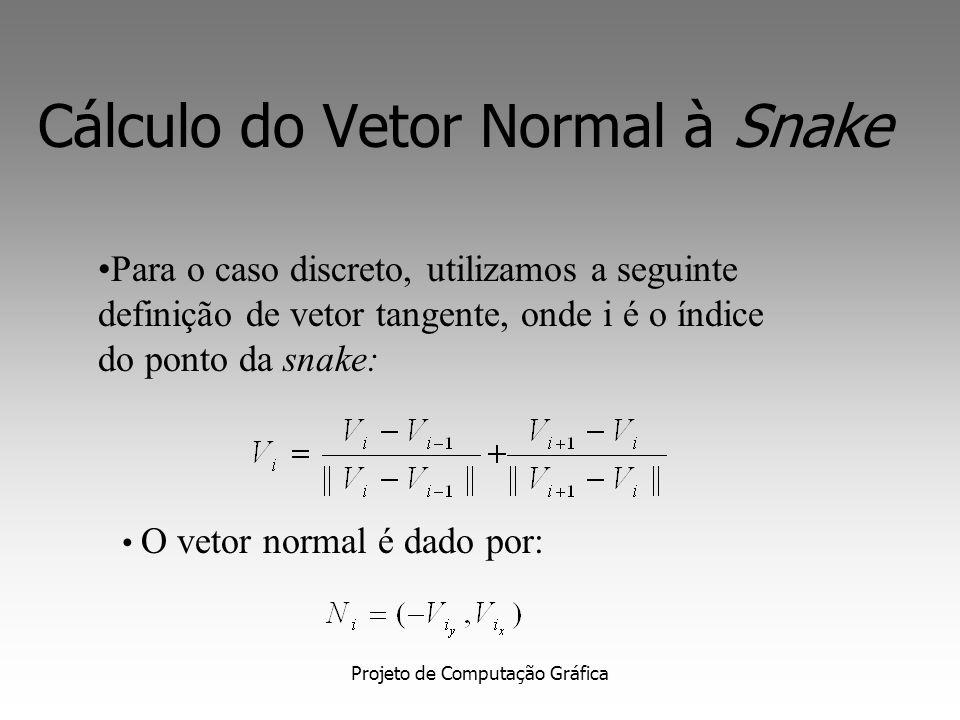 Cálculo do Vetor Normal à Snake