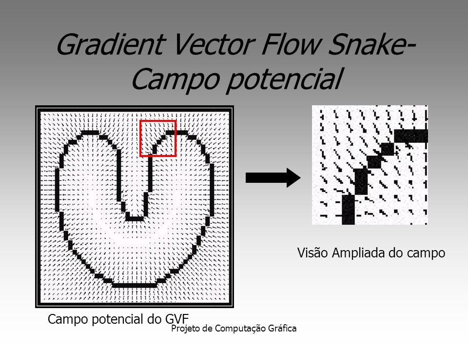 Gradient Vector Flow Snake- Campo potencial
