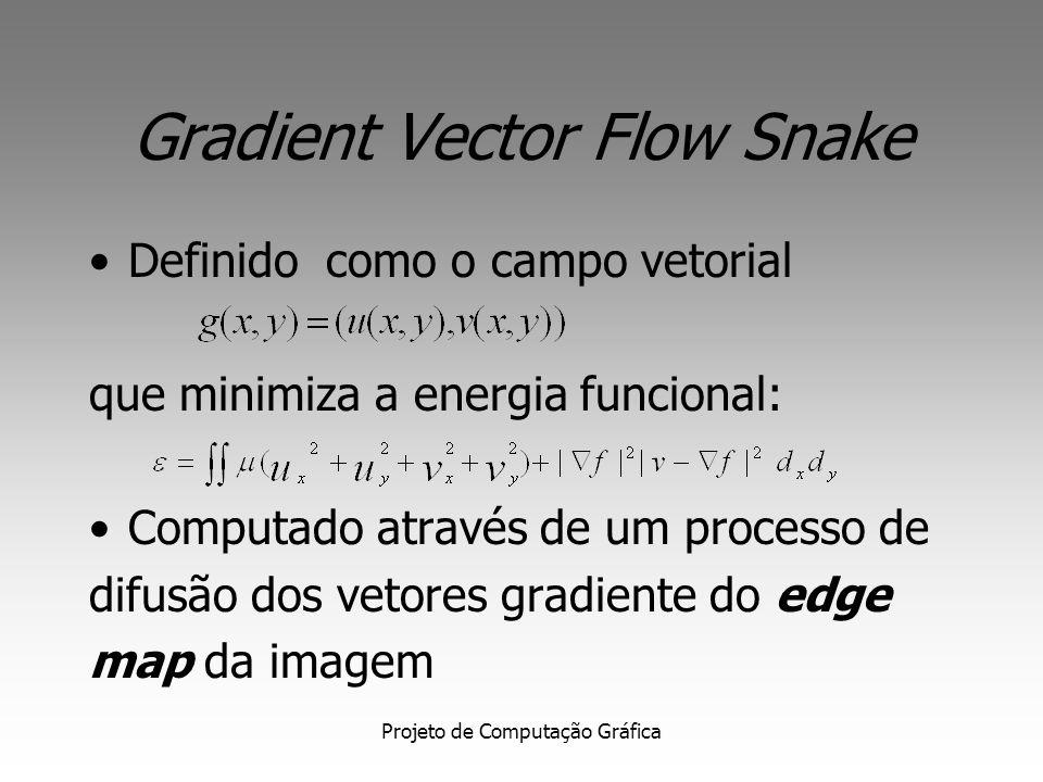 Gradient Vector Flow Snake